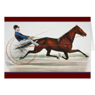 Cartão Piloto de cavalo do chicote de fios - belas artes