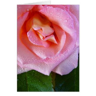 Cartão pingo de chuva-rosa
