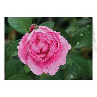 Cartão Pingos de chuva cor-de-rosa