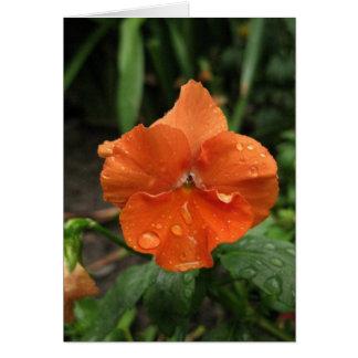 Cartão Pingos de chuva de Blank_Orange