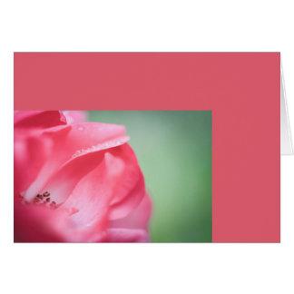 Cartão Pingos de chuva em um rosa