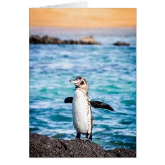 Cartão Pinguim na ilha de Bartolome