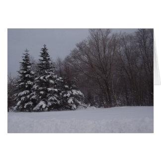 Cartão Pinhos nevado