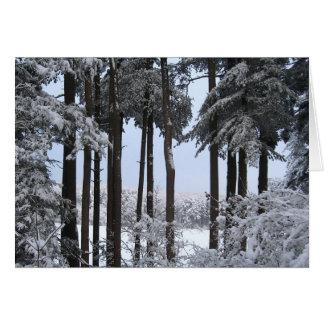 Cartão Pinhos nevado na luz azul