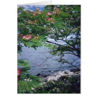 Cartão pinktreewaterview 001