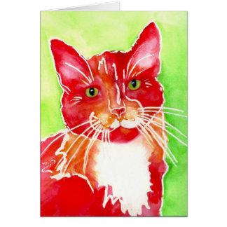 """Cartão """"Pinte"""" o gatinho de AFRP"""