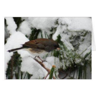 Cartão Pintura das aves canoras do Junco