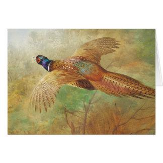 Cartão Pinturas do pássaro do faisão do vôo de Archibald