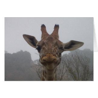 Cartão Pisc o girafa