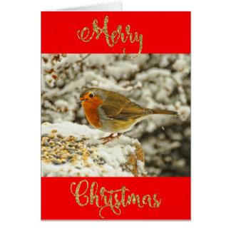 Cartão Pisco de peito vermelho do Feliz Natal na foto da