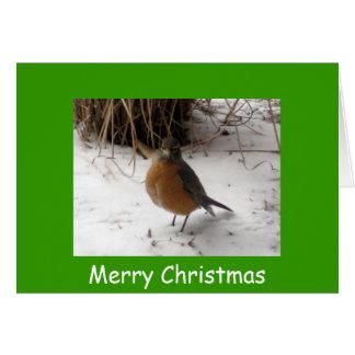 Cartão Pisco de peito vermelho na neve, Feliz Natal