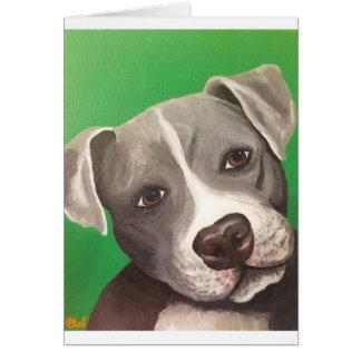 Cartão (pitbull)