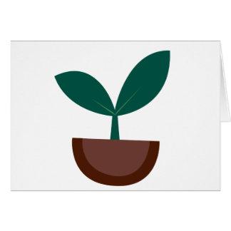 Cartão Planta crescente
