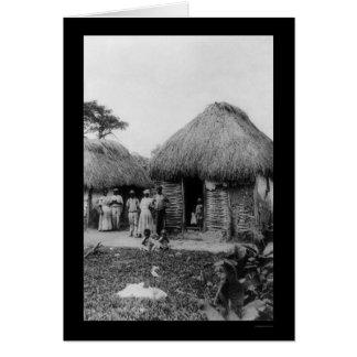 Cartão Plantação 1896 do tabaco de Jamaica