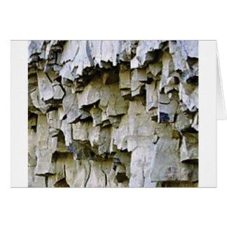 Cartão plissados aleatórios da rocha