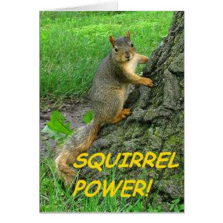Cartão Poder do esquilo!