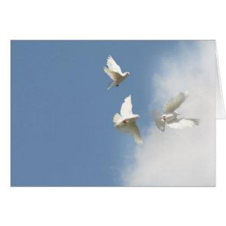 Cartão Pombas do vôo