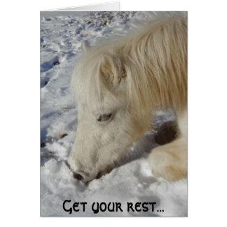Cartão Pônei de galês branco adormecido