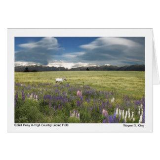 Cartão Pônei do espírito no campo alto do Lupine do país