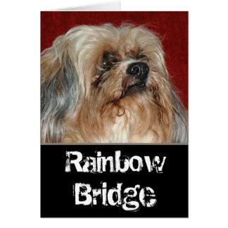 Cartão Ponte do arco-íris - meu amigo
