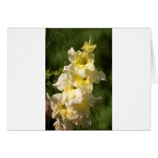Cartão Ponto amarelo da flor do tipo de flor