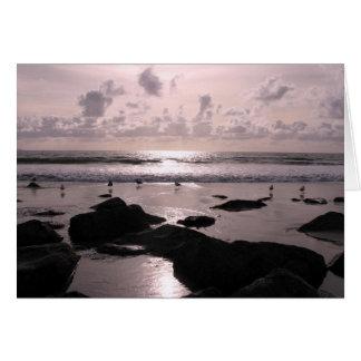 Cartão Por do sol da praia de San Diego Califórnia