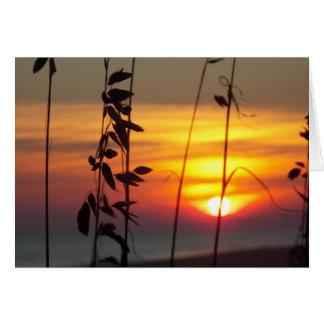 Cartão Por do sol do inverno