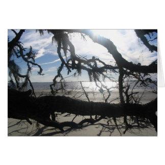 Cartão Por do sol do oceano