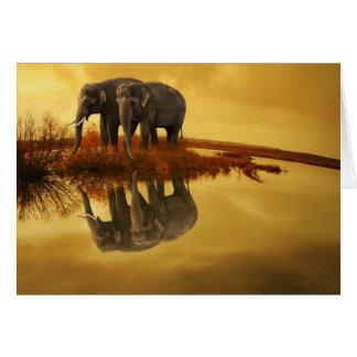 Cartão Por do sol dos elefantes