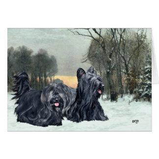 Cartão Por do sol nevado dos terrier de Skye