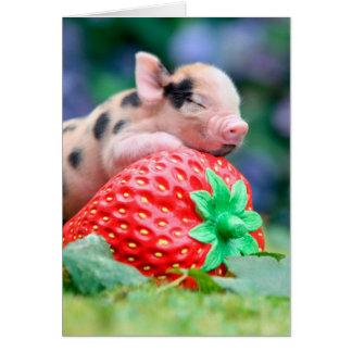 Cartão porco da morango