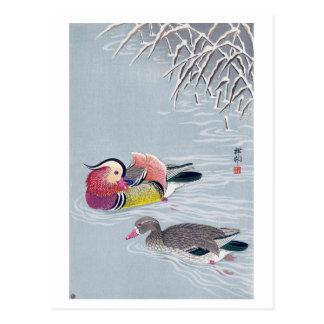 Cartão Postal オシドリ, pato de mandarino do 小原古邨, Ohara Koson,