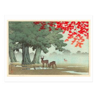 Cartão Postal 奈良公園の鹿, cervo do parque de Nara, Hasui Kawase,