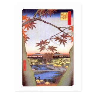 Cartão Postal 江戸の紅葉, bordo do 広重 de Edo, Hiroshige, Ukiyo-e