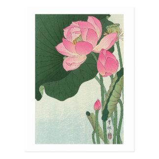 Cartão Postal 蓮の花, flor de Lotus do 小原古邨, Ohara Koson, Ukiyo-e