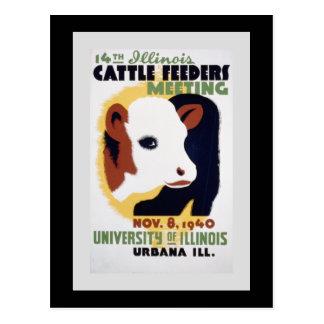 """Cartão Postal """"14os alimentadores do gado de Illinois que"""