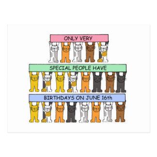 Cartão Postal 16 de junho gatos do aniversário