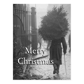 Cartão Postal 1915: Um soldado que leva uma árvore de Natal