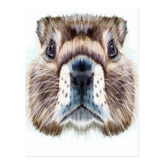 Cartão Postal 2 de fevereiro - dia da marmota - dia da