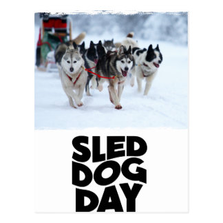 Cartão Postal 2 de fevereiro - dia de cão do trenó
