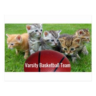 Cartão Postal 5 gatos formam uma equipa de basquetebol