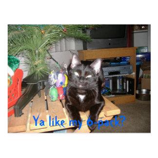Cartão Postal 6 blocos felino