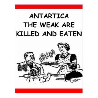 Cartão Postal a Antártica