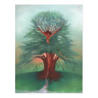 Cartão Postal A árvore da cura