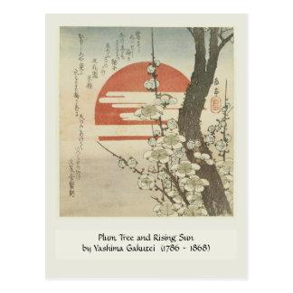 Cartão Postal A árvore de ameixa e a ascensão Sun