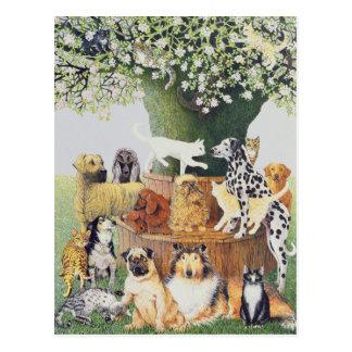 Cartão Postal A árvore de Trysting