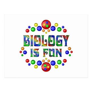 Cartão Postal A biologia é divertimento