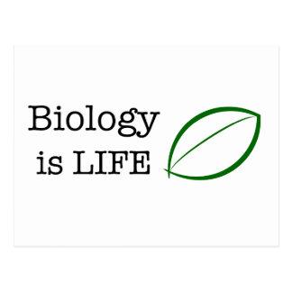 Cartão Postal A biologia é vida