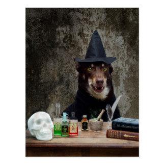 Cartão Postal A bruxa