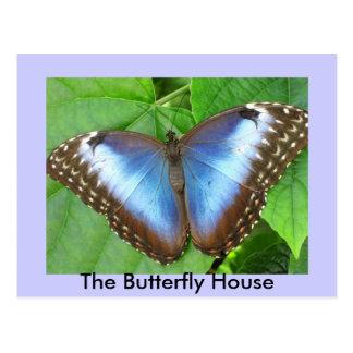 Cartão Postal A casa da borboleta